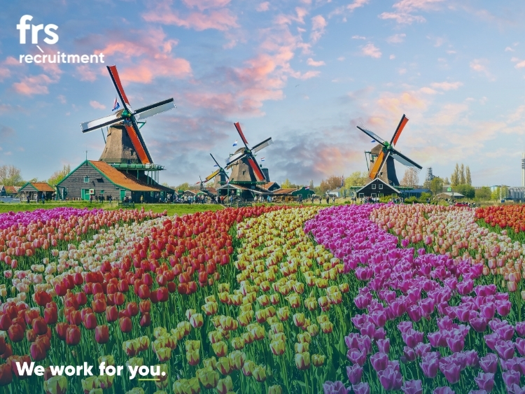 Graduate Engineering Opportunities - The Netherlands